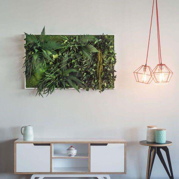 Moosbilder und pflanzenbilder ohne pflege stylegreen for Moos bilder
