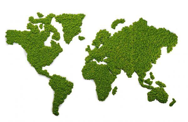 Wallart: Große Islandmoos-Weltkarte