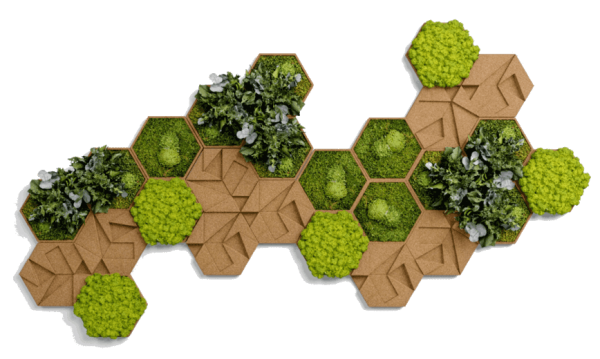 Hexagon-Set aus Kork, frontal