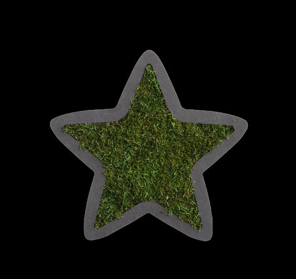 Piktogramm: Sternchen