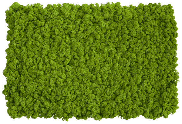 Flexgreen Islandmoosmatte