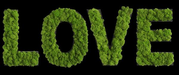 Piktogramm: Buchstaben Set LOVE
