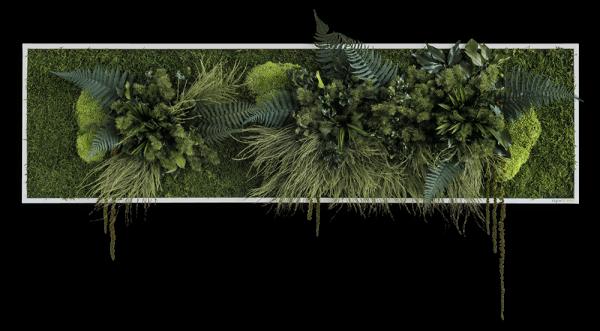 Pflanzeninselbild 140x40