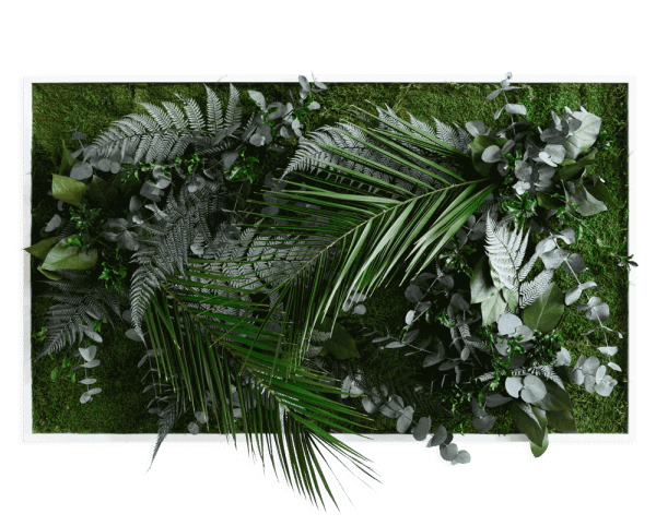 plant pictures with jungle design 100x60cm solid wood frame (white)