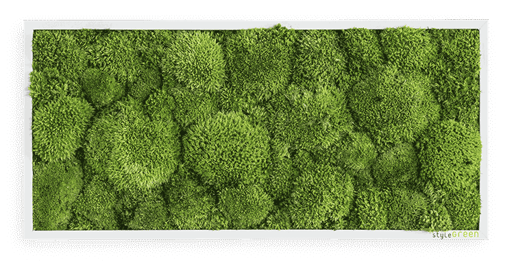 Polstermoosbild 27 x 57 cm zum Aufhängen ohne Pflege | styleGREEN