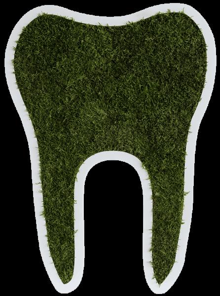 Waldmoos Piktogramm Zahn