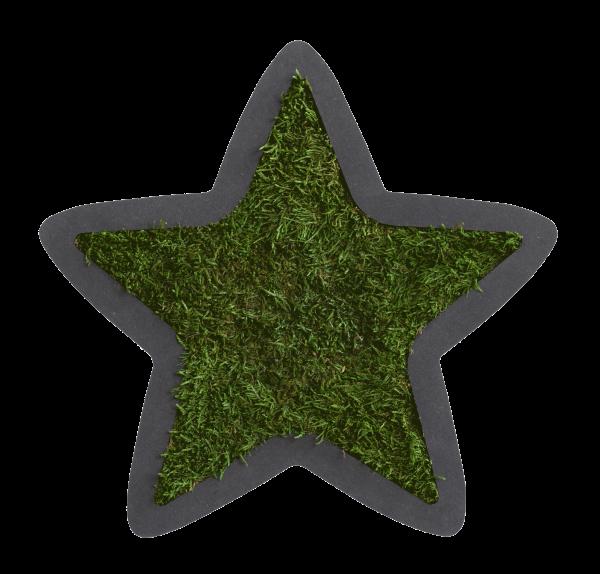Pictogram: Star