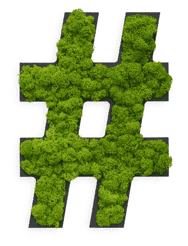"Pictogram: Special symbol ""hashtag"" Reindeer moss"