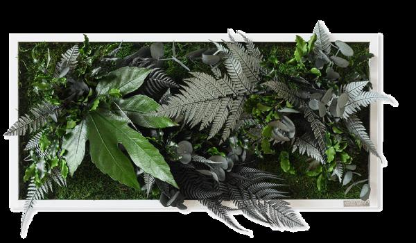 Pflanzenbild im Dschungeldesign 57x27cm Vollholz (weiß)