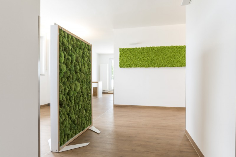 office greenery. Room Divider With Pole Moss Office Greenery