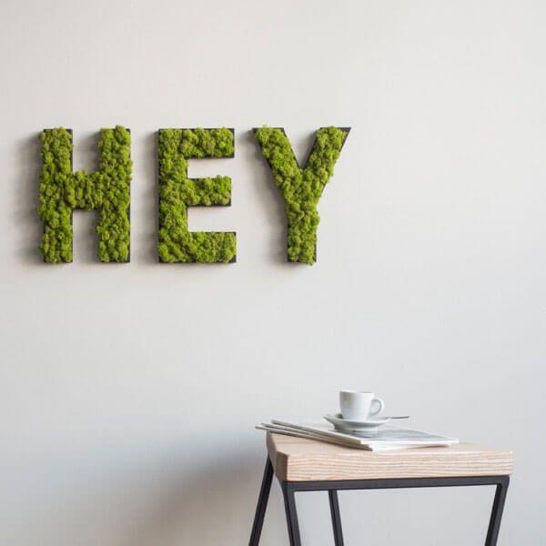 Moosbilder und pflanzenbilder ohne pflege stylegreen for Style green