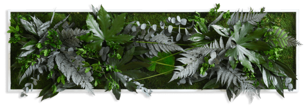 plant pictures with jungle design 140x40cm solid wood frame (white)