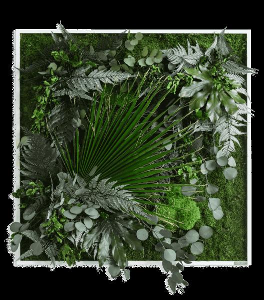 Pflanzenbild im Dschungeldesign 80x80