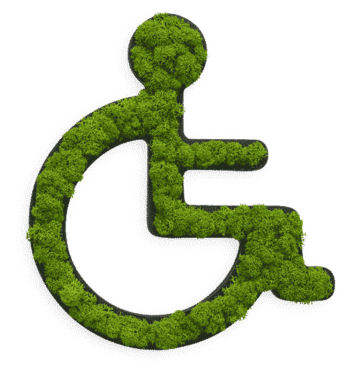 Reindeer moss pictogram wheelchair