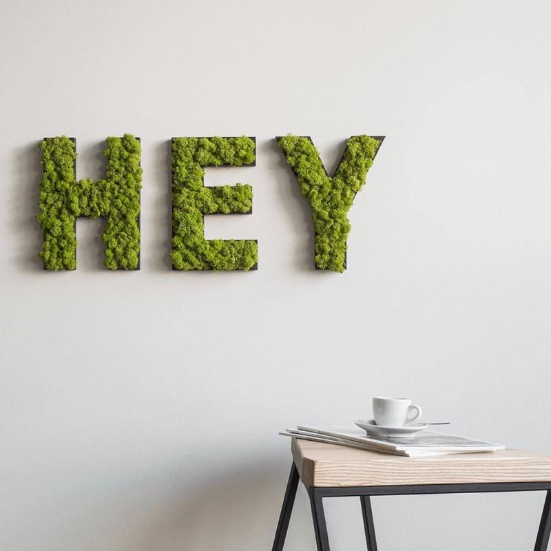 Moosbilder und Pflanzenbilder ohne Pflege | styleGREEN