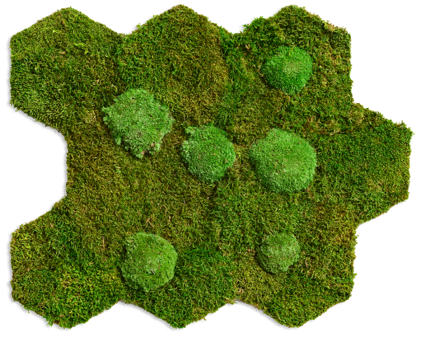flexGREEN forest and polemoss (2 mats)